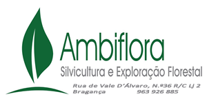 Ambiflora
